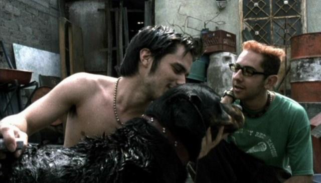 Amores Perros 3